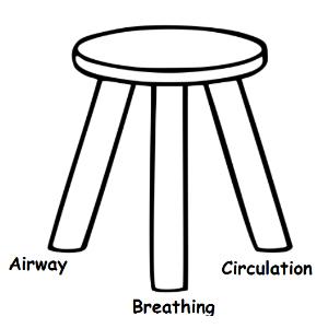GIB 3 legged stool.png