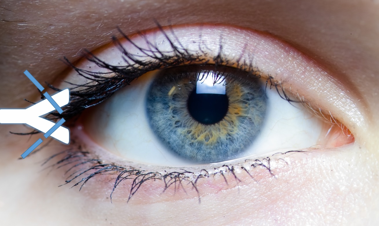 https://commons.wikimedia.org/wiki/File:Iris_-_left_eye_of_a_girl.jpg