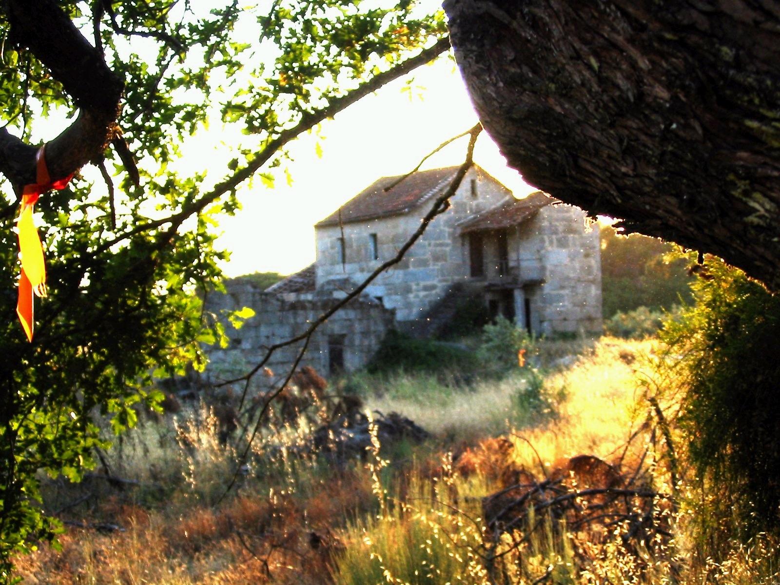 Daniels pic of Quinta.jpg