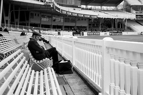 sleeping cricket 2.jpg