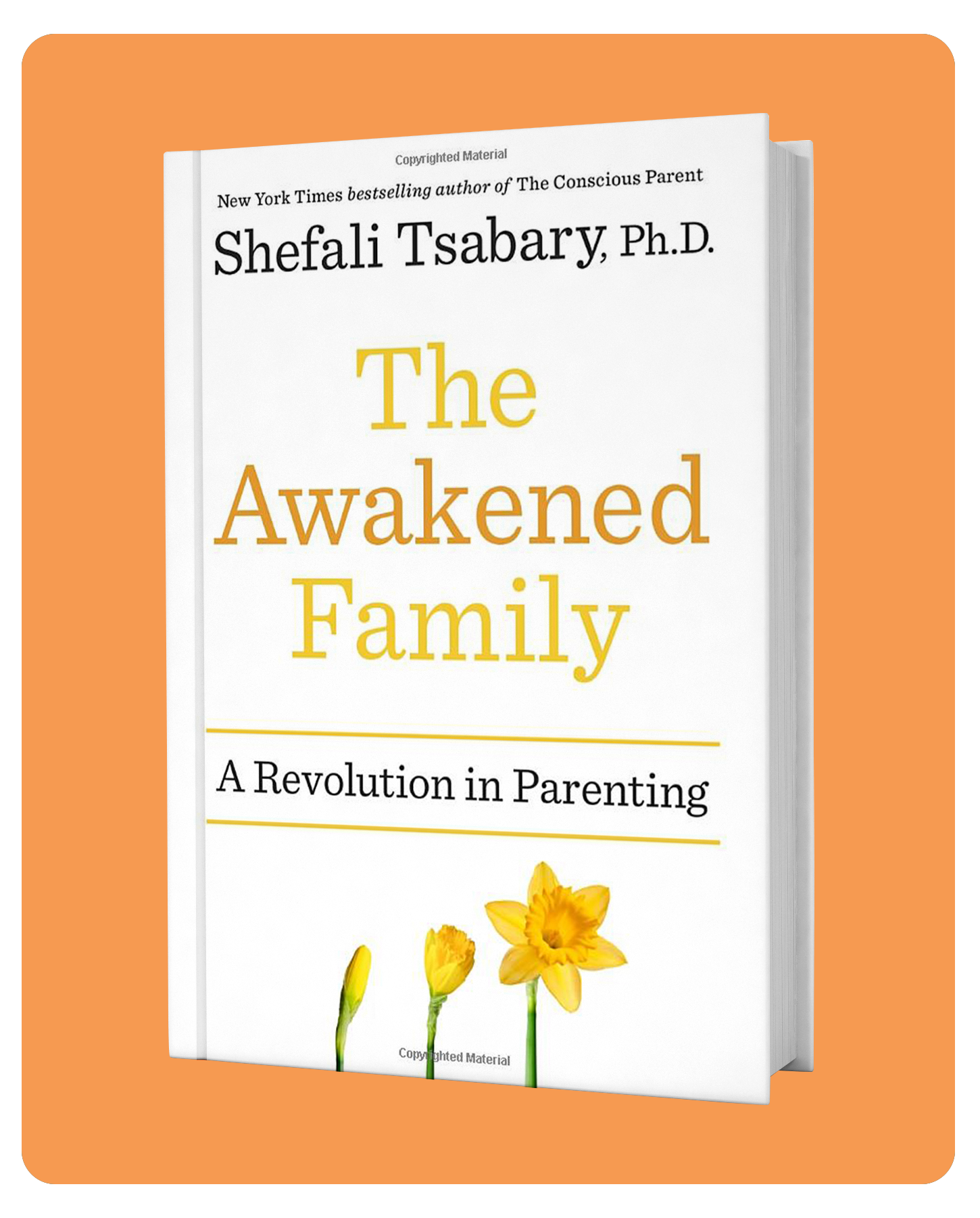 The_Awakened_Family_Cover_Original.jpg
