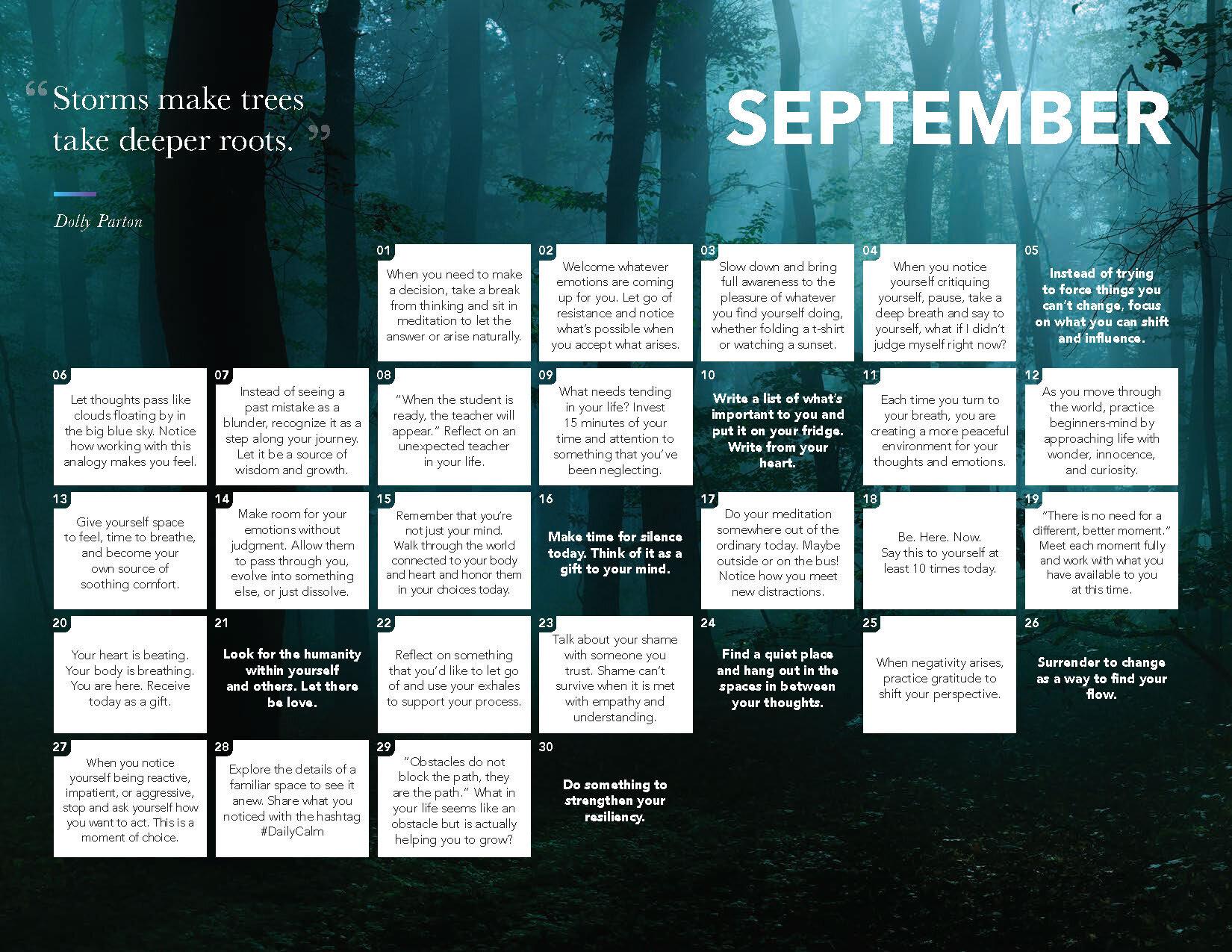 2020 Daily Calm Calendar_Page_10.jpg