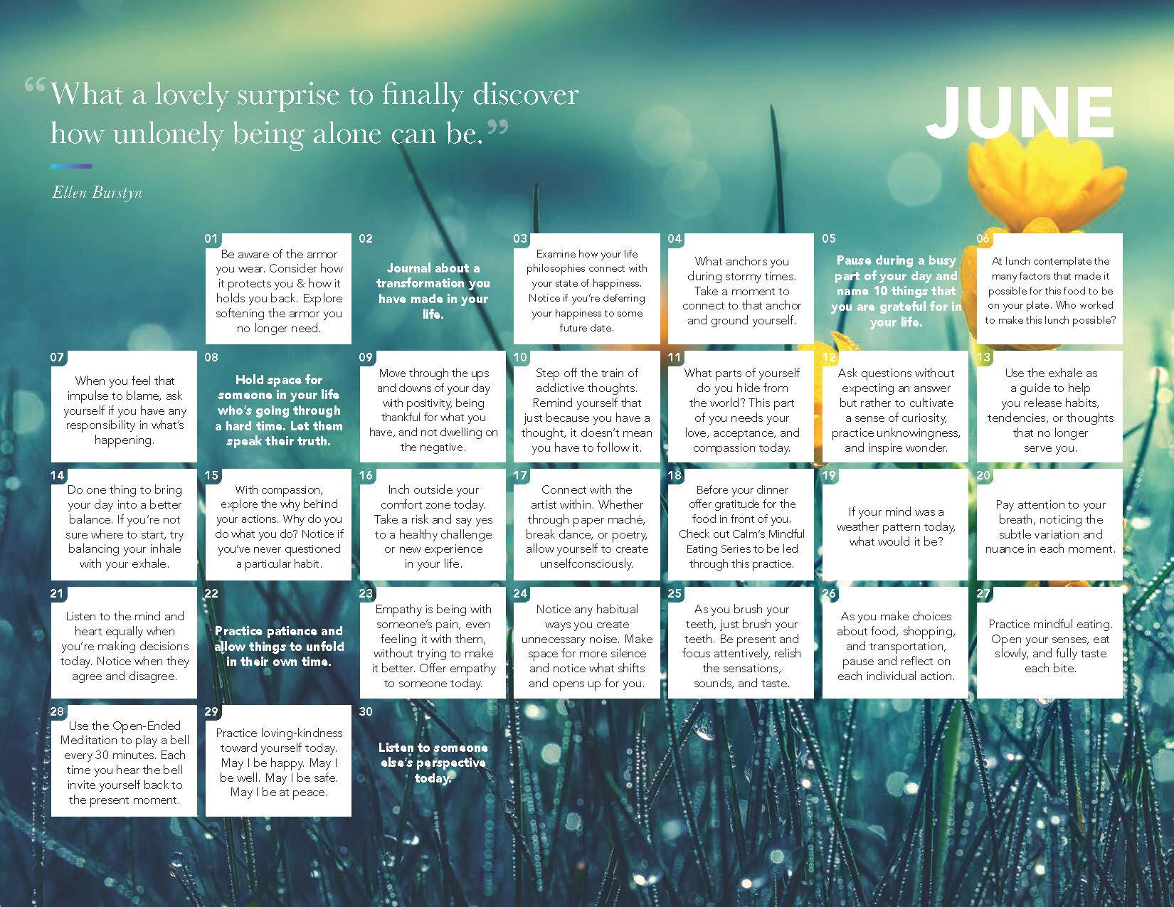 2020 Daily Calm Calendar_Page_07.jpg