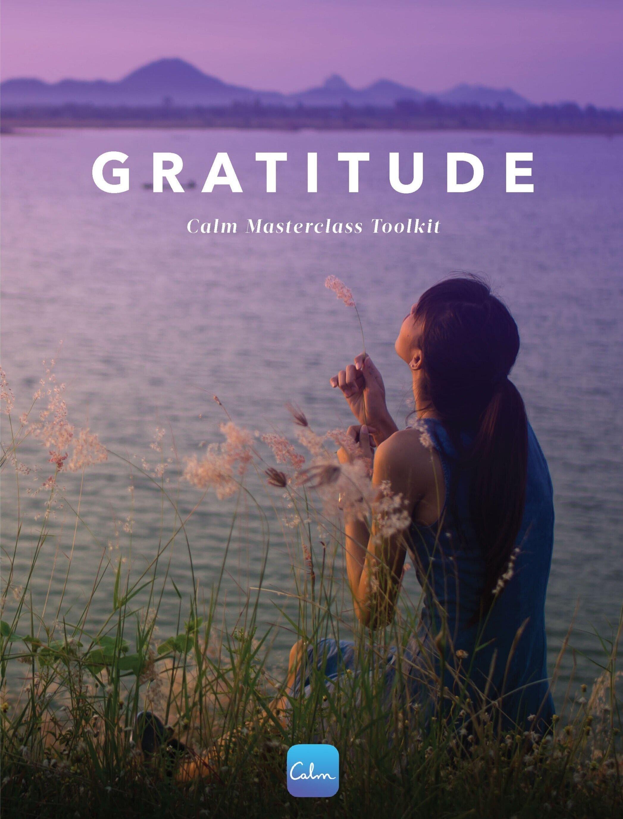 Gratitude%2BToolkit_Page_01.jpg