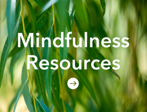 Mindfulness Resources_Tile copy.png