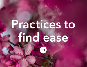 Practices to find ease_Tile copy.png