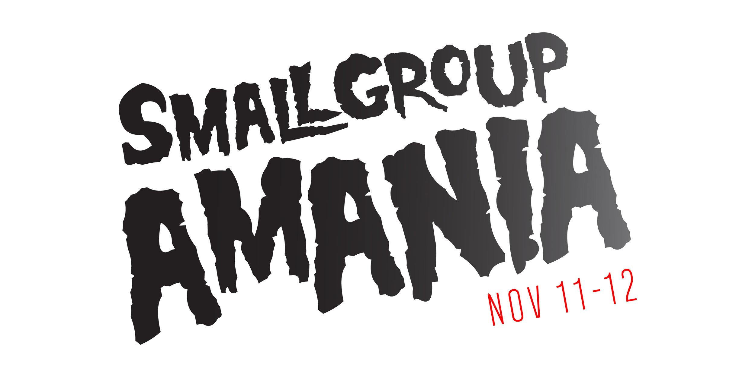 smallgroupamania_02.jpg