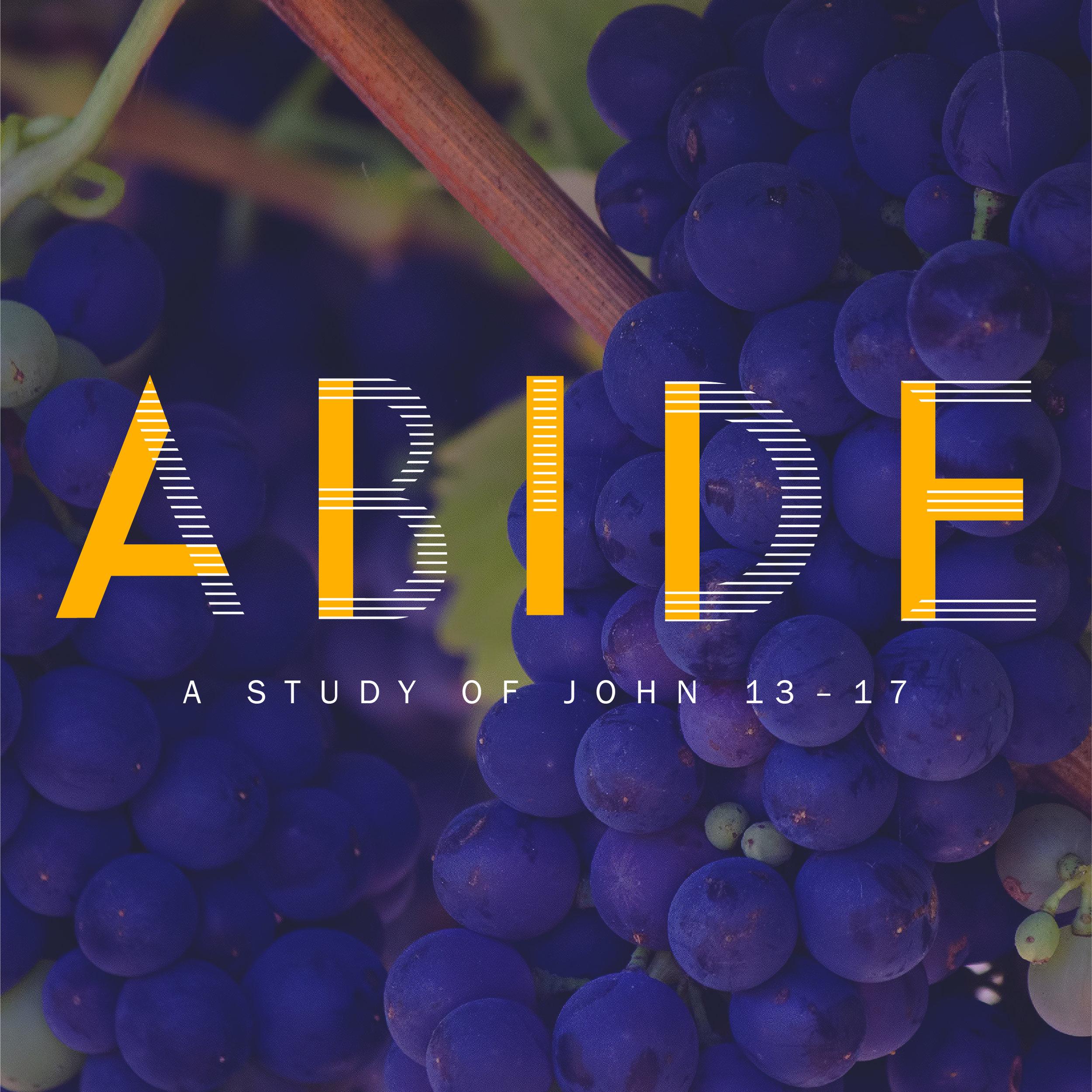 Abide_series-09.jpg