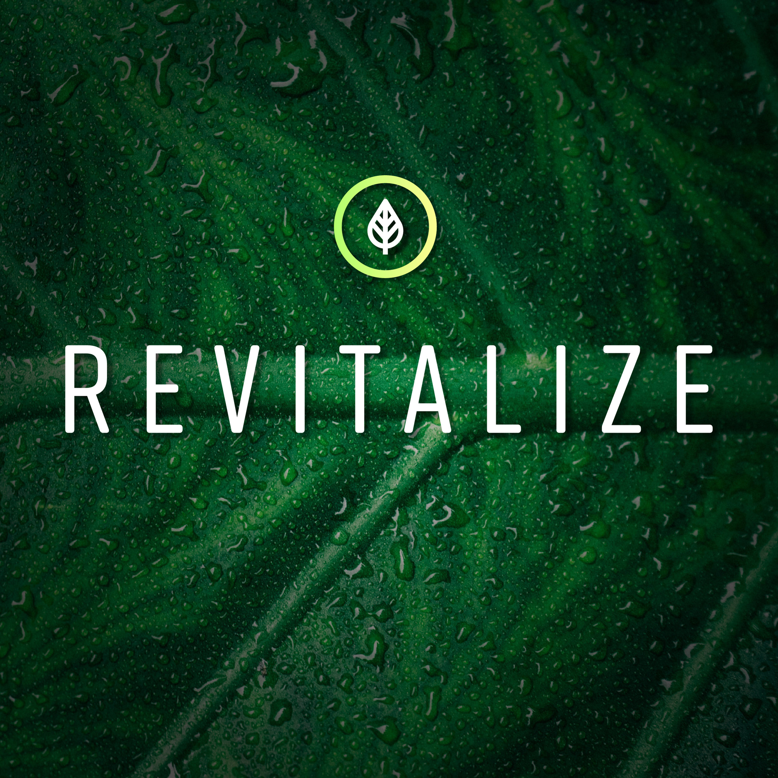 Revitalize_graphics_Web Square - 600x600.jpg