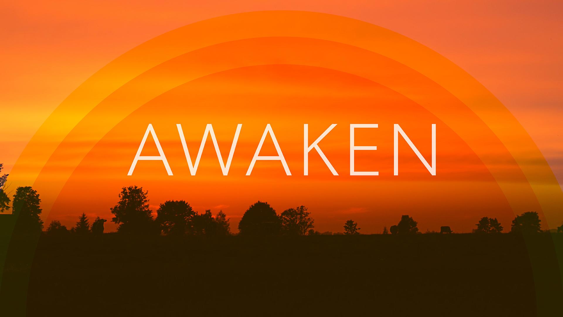 Awaken-01-web.jpg