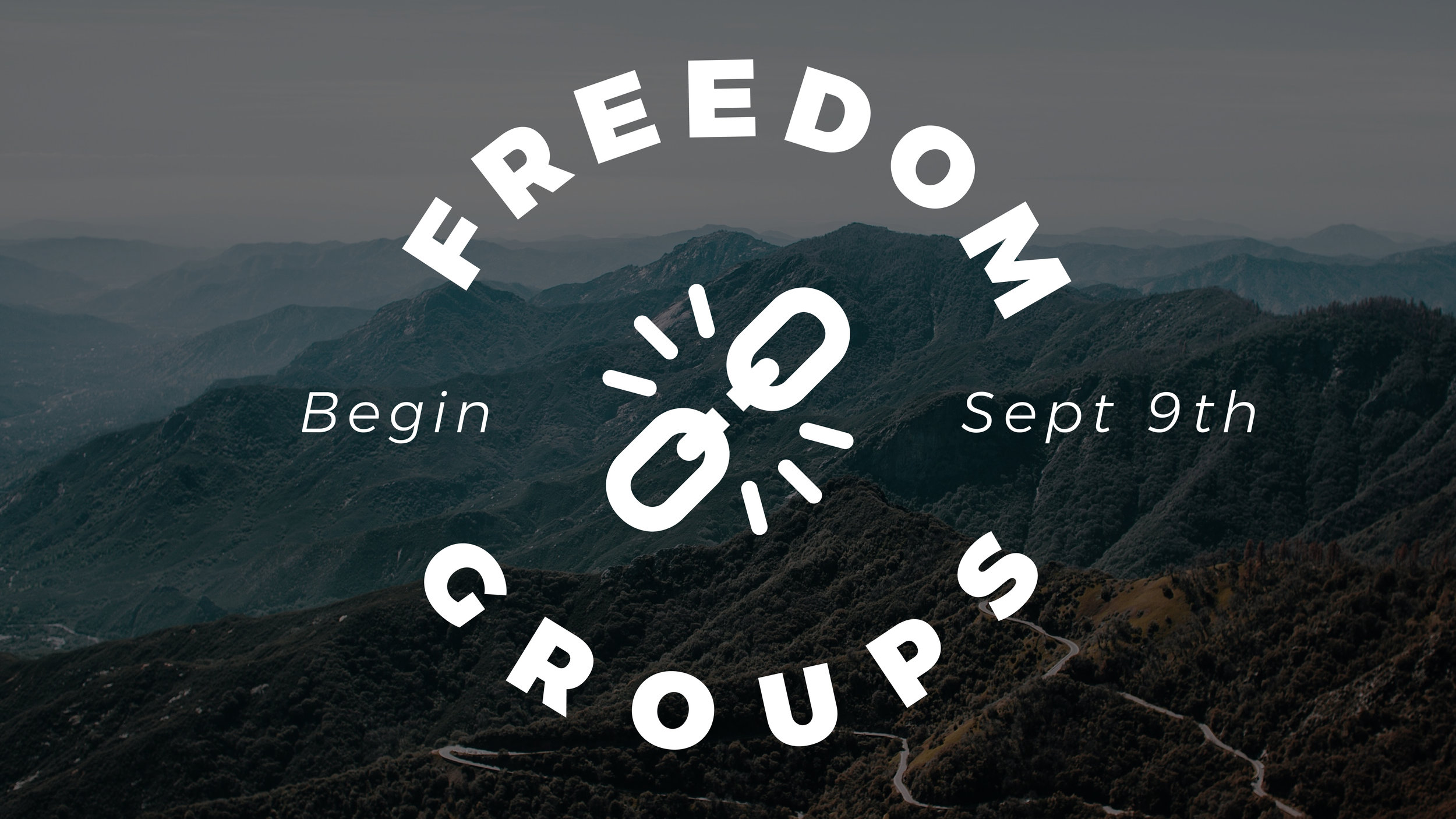 FREEDOM GROUPS GRAPHIC-01.jpg