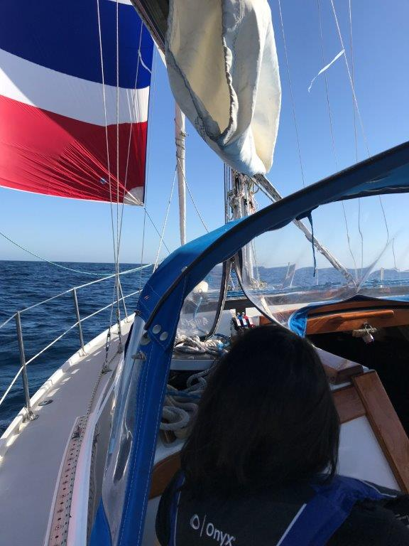 Spinnaker sailing off Dana Point
