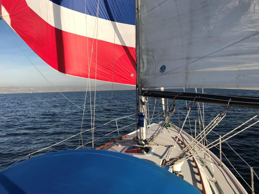Wing and wing with the asymmetrical spinnaker