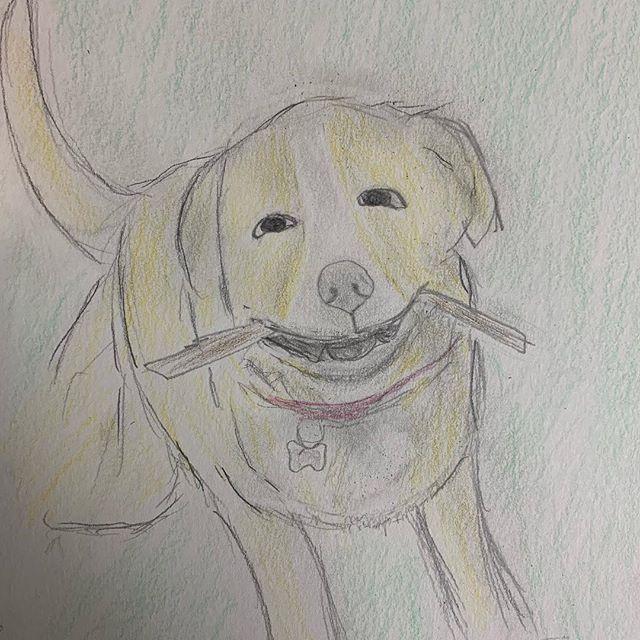 It's a dog.
