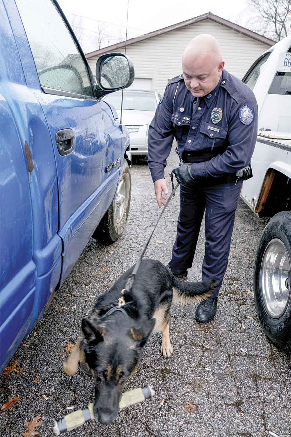 Mount Sterling Police Officer Jason Perry rewards K-9 Dexter after successfully alerting on drugs hidden inside this blue truck. Perry is MSPD's first K-9 officer, and he says he and Dexter work hard and train consistently to ensure the K-9 program's success. (Photo by Jim Robertson)