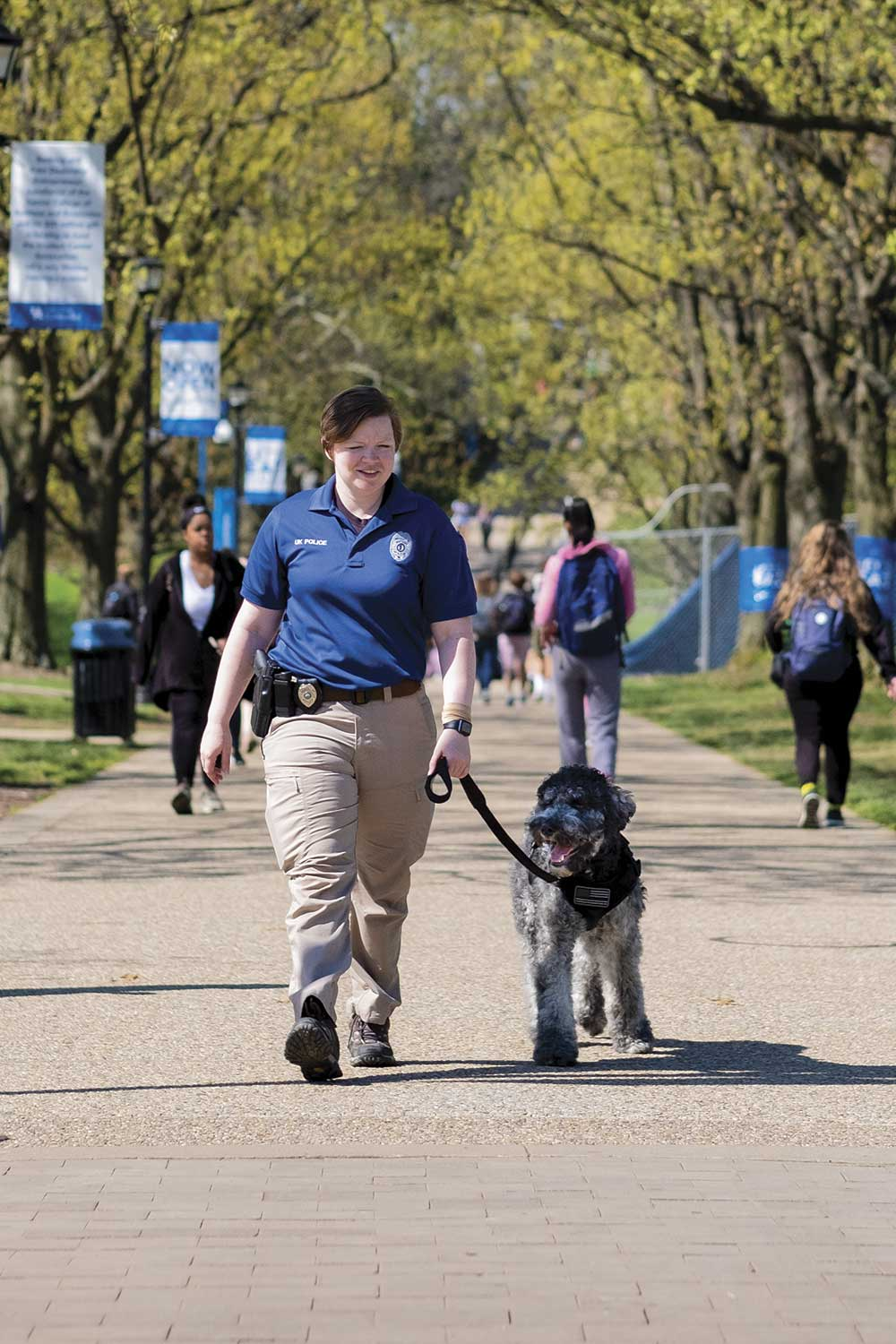 University of Kentucky Police Officer Amy Boatman and UKPD therapy dog Oliver are often seen in and around campus. In early May, Boatman and Oliver walked down a sidewalk near Wildcat Alumni Plaza. (Photo by Jim Robertson)
