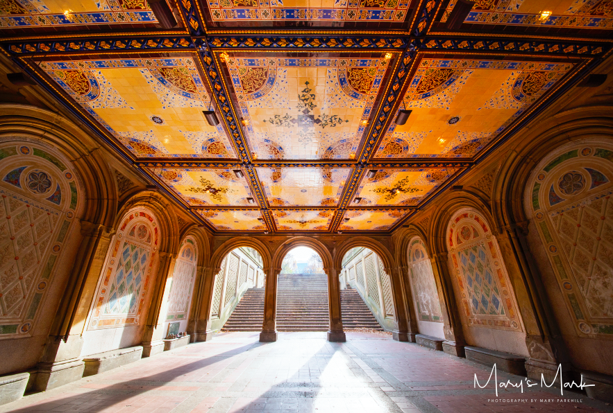 Bethesda Terrace, Central Park   After walking from Manhattan to Central Park, I continued towards The Lake crossing under the Bethesda Terrace. I love how the sun lit up the beautiful tile artwork.