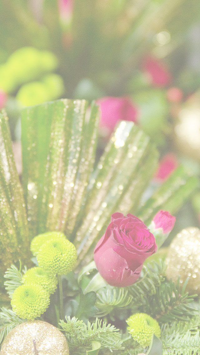 Holiday Themed Digital Download by Mary's Mark Photography