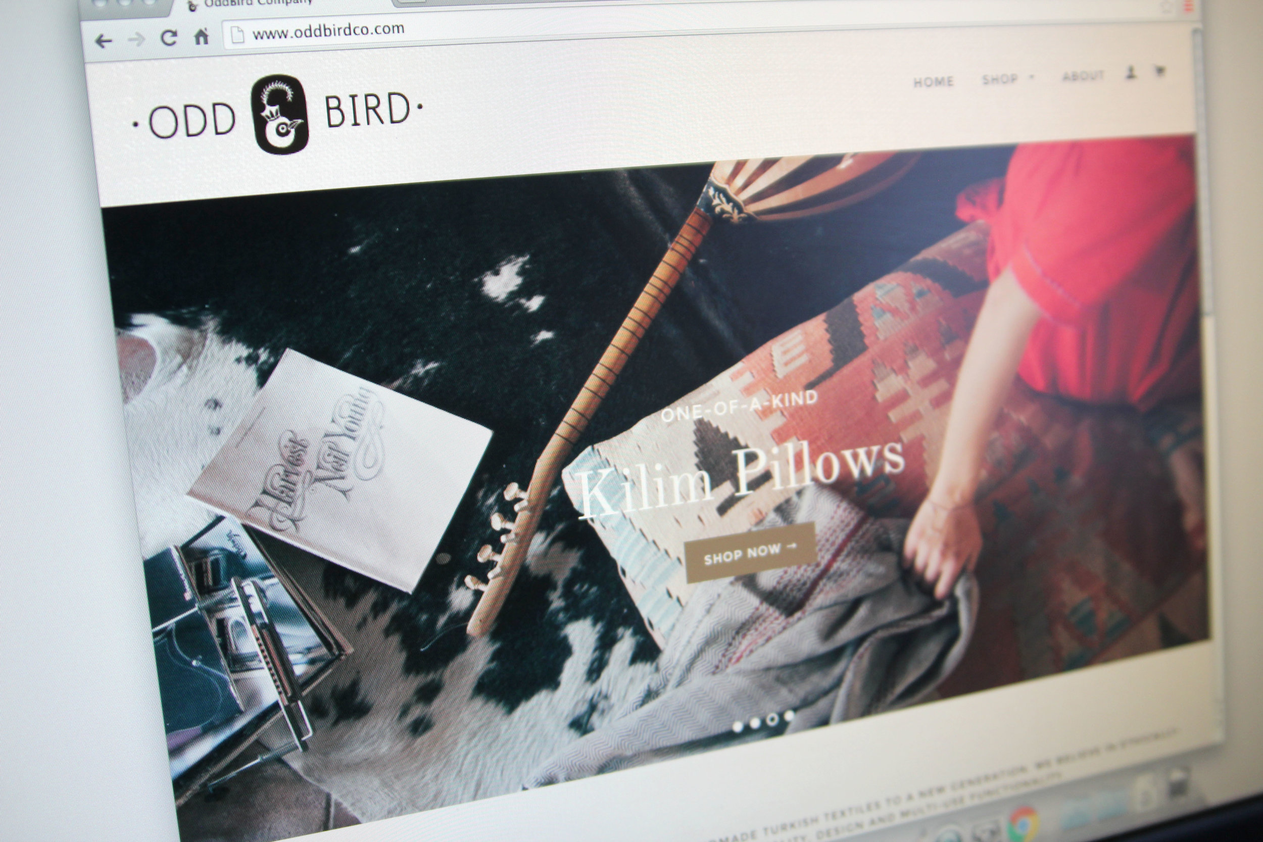 Oddbirdco.com - Website design and CSS customizations for e-commerce business