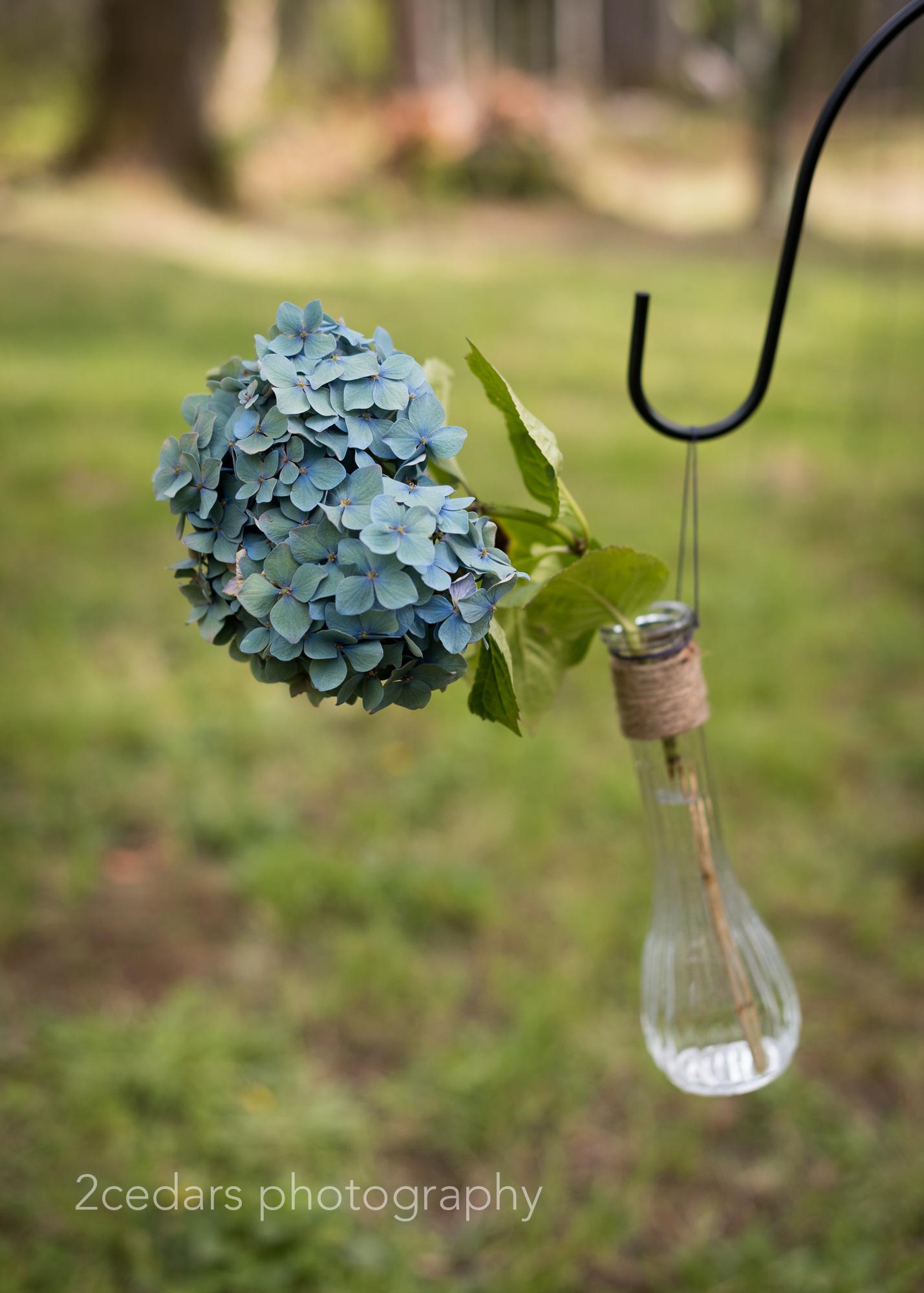 Hydrangeas in a bottle natural wedding decor