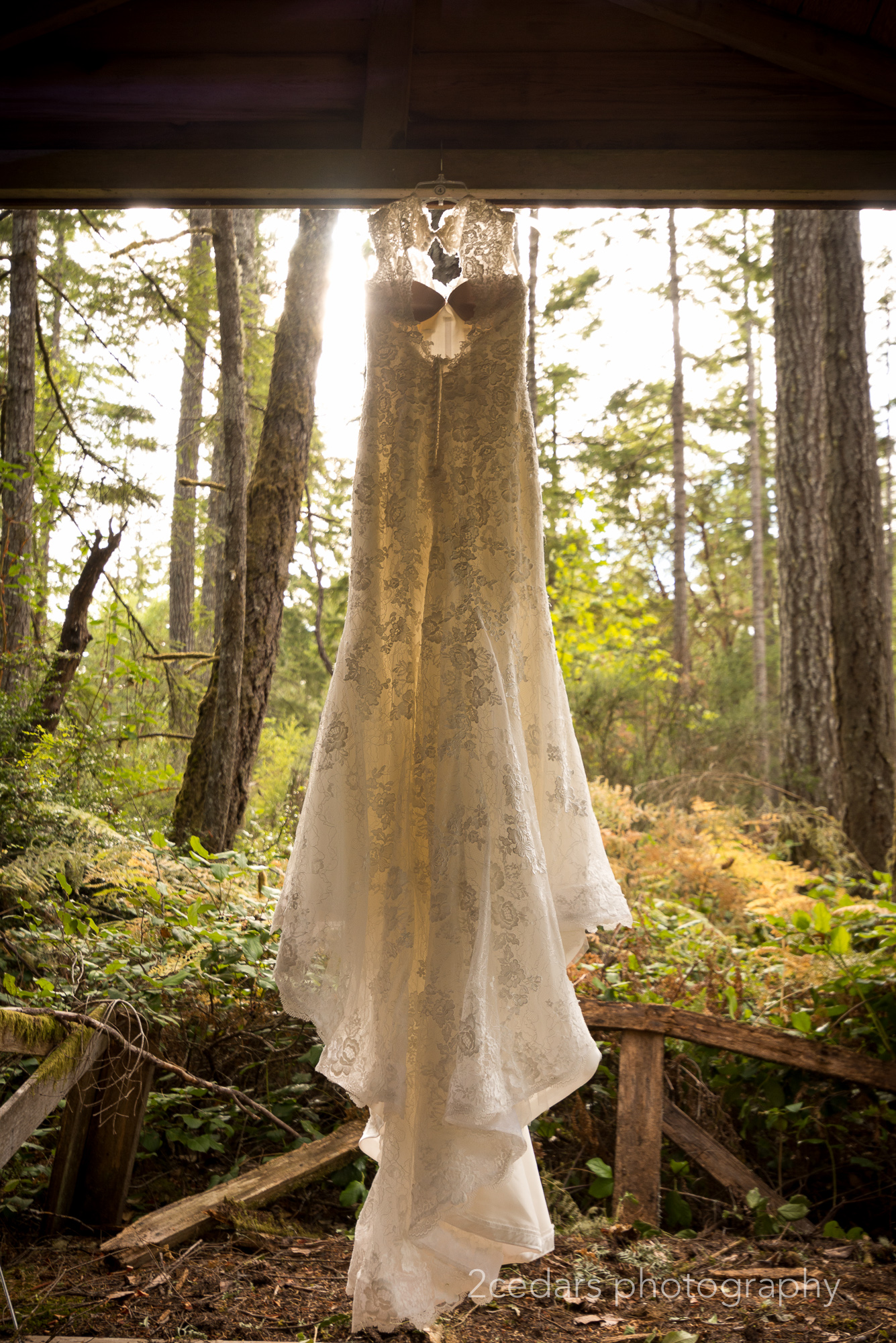 Wedding Dress Silhouette Pacific Northwest Forest Wedding