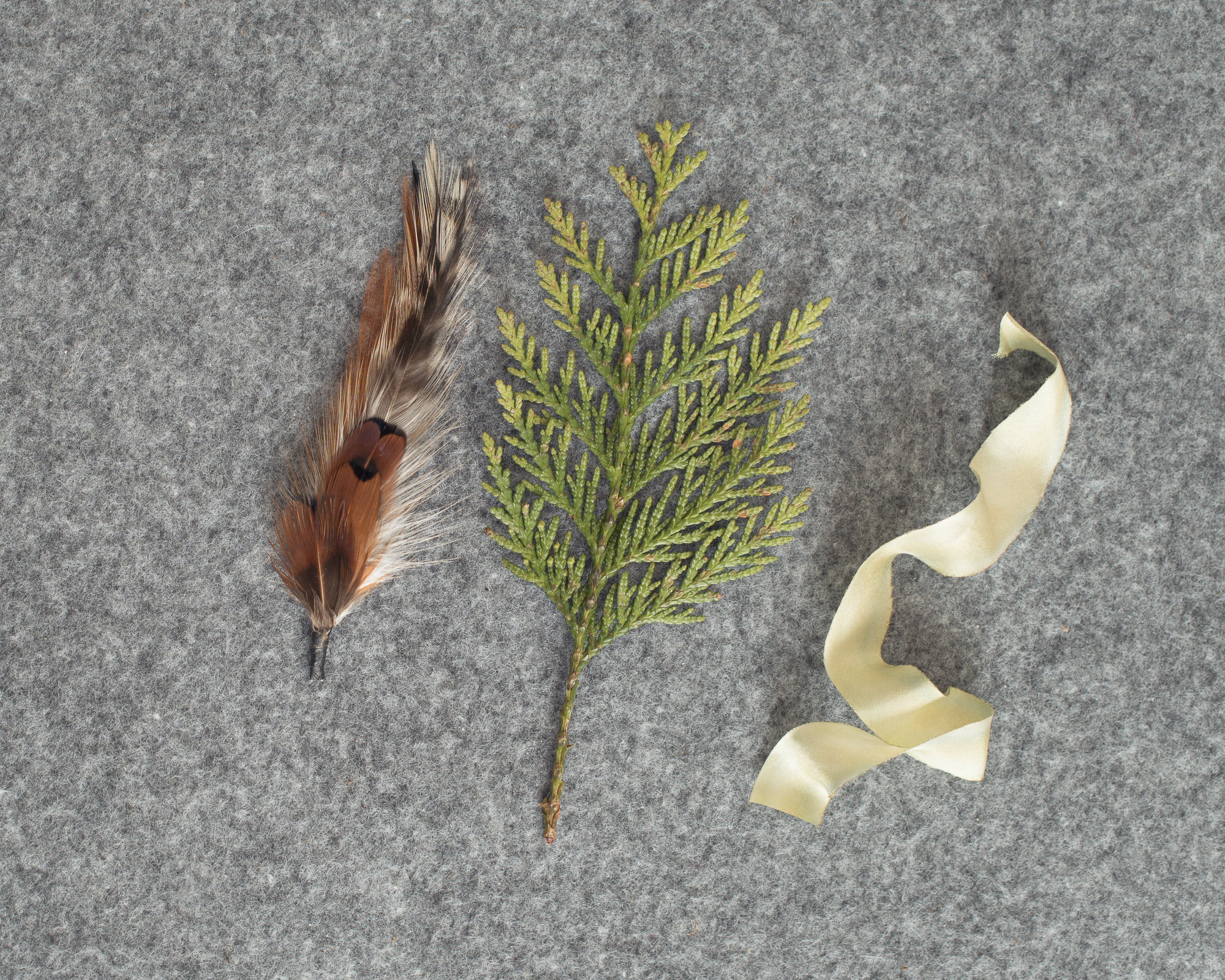 2 Cedars Photography - Seattle/Tacoma Photographers  Feather pick, cedar tip and silk ribbon to make your own groomsmen boutonnieres