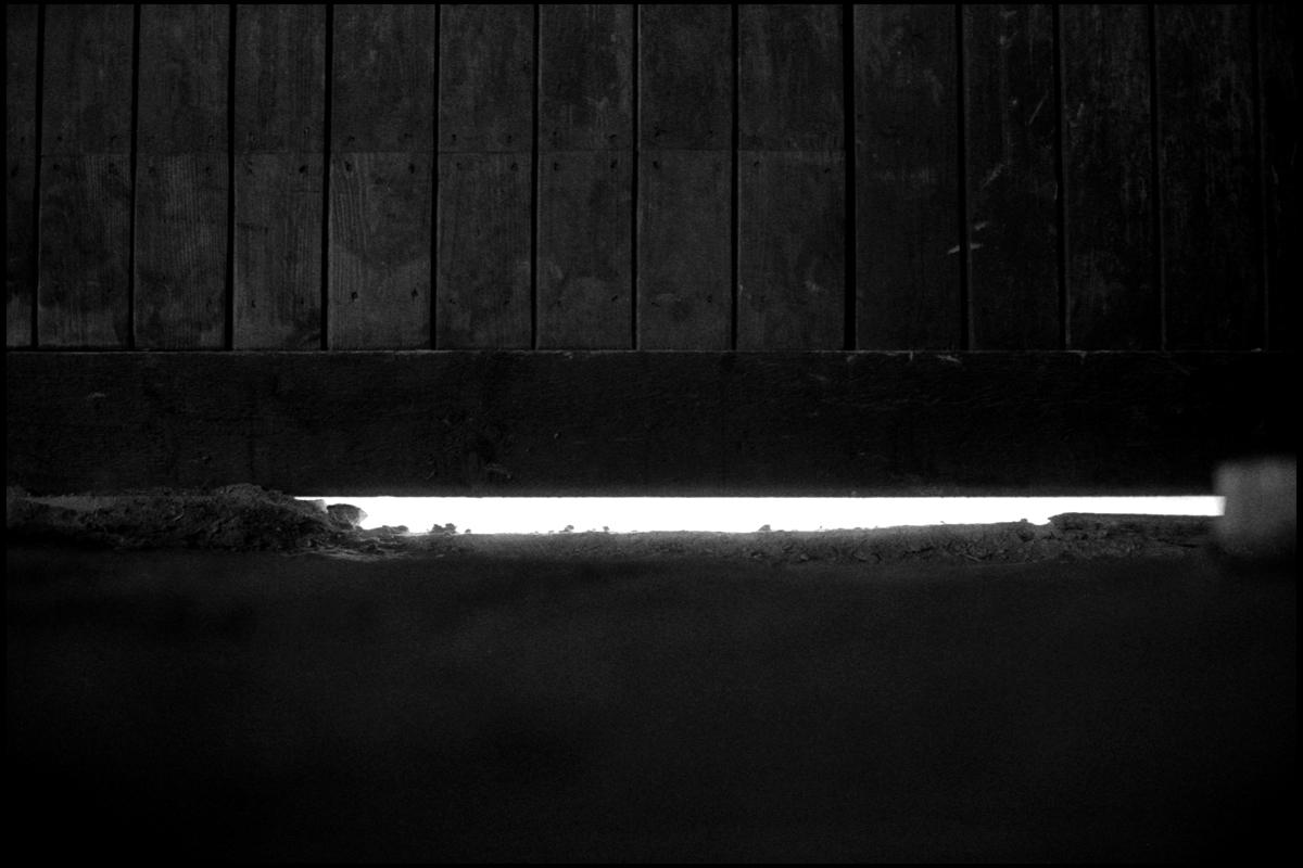 Auschwitz 008.jpg