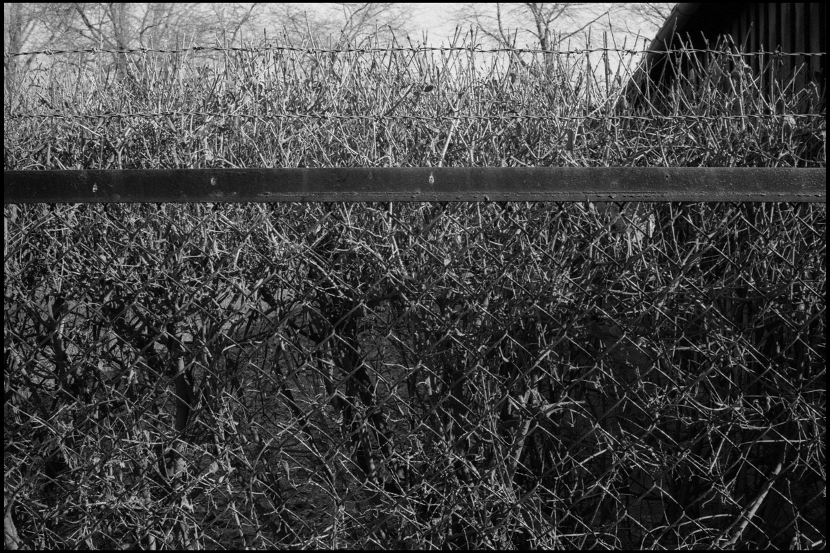 Auschwitz 018.jpg