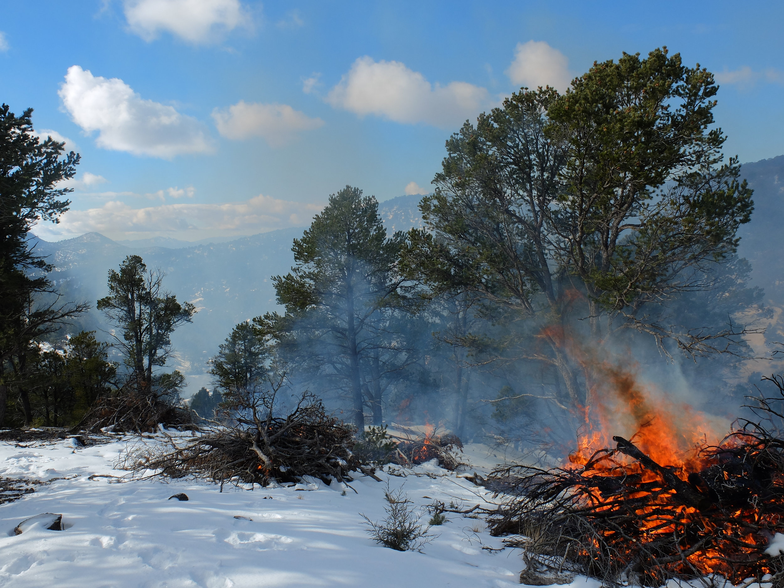 A fireshed is an area where social and ecological concerns regarding wildfire overlap and are intertwined.