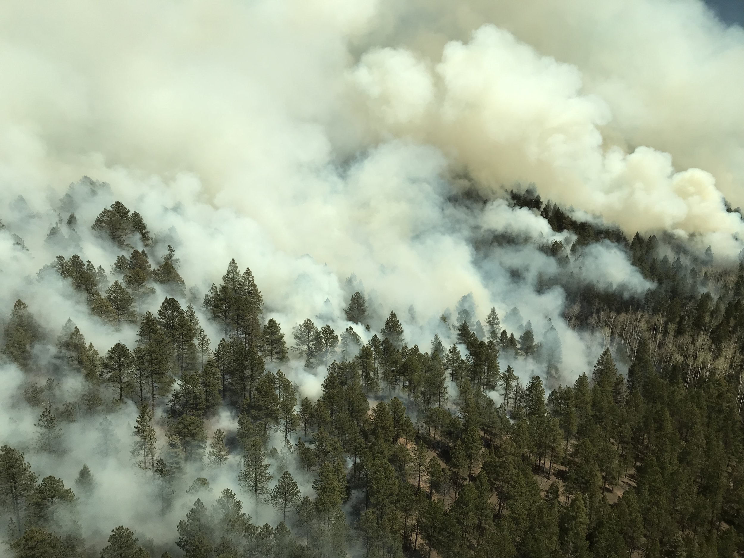 Photo taken from a helicopter during fire ignitions on the Pacheco Rx