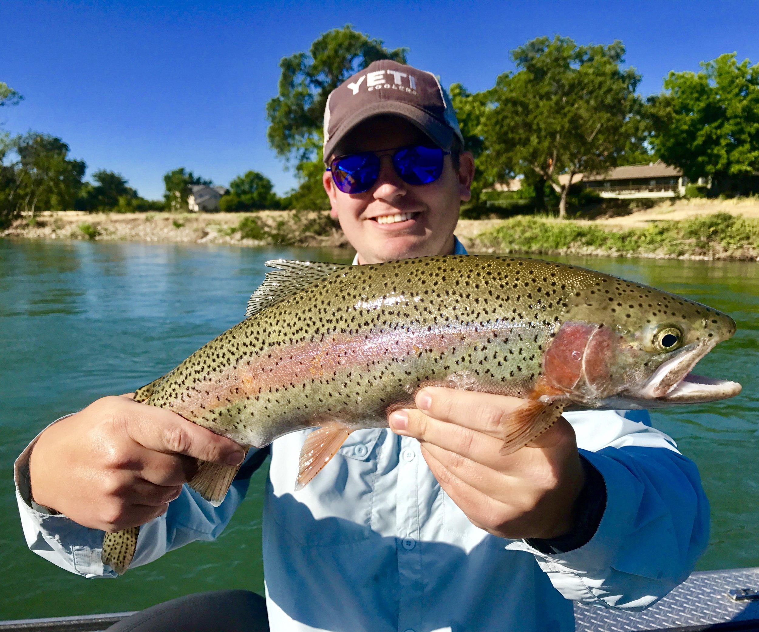 Sacramento River rainbow trout trips!