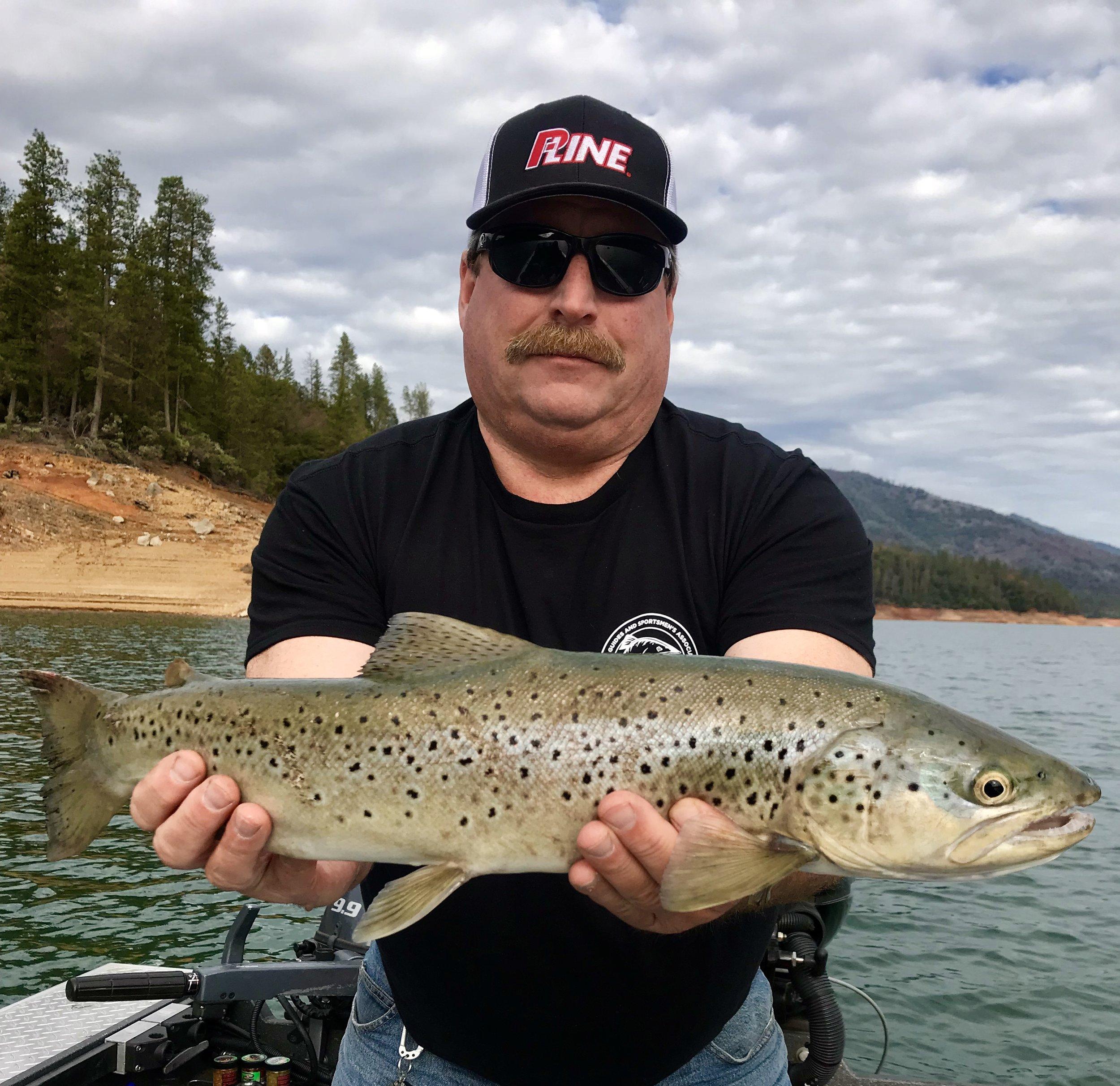 Nice female German Brown caught this week in the McCloud arm of Shasta Lake.