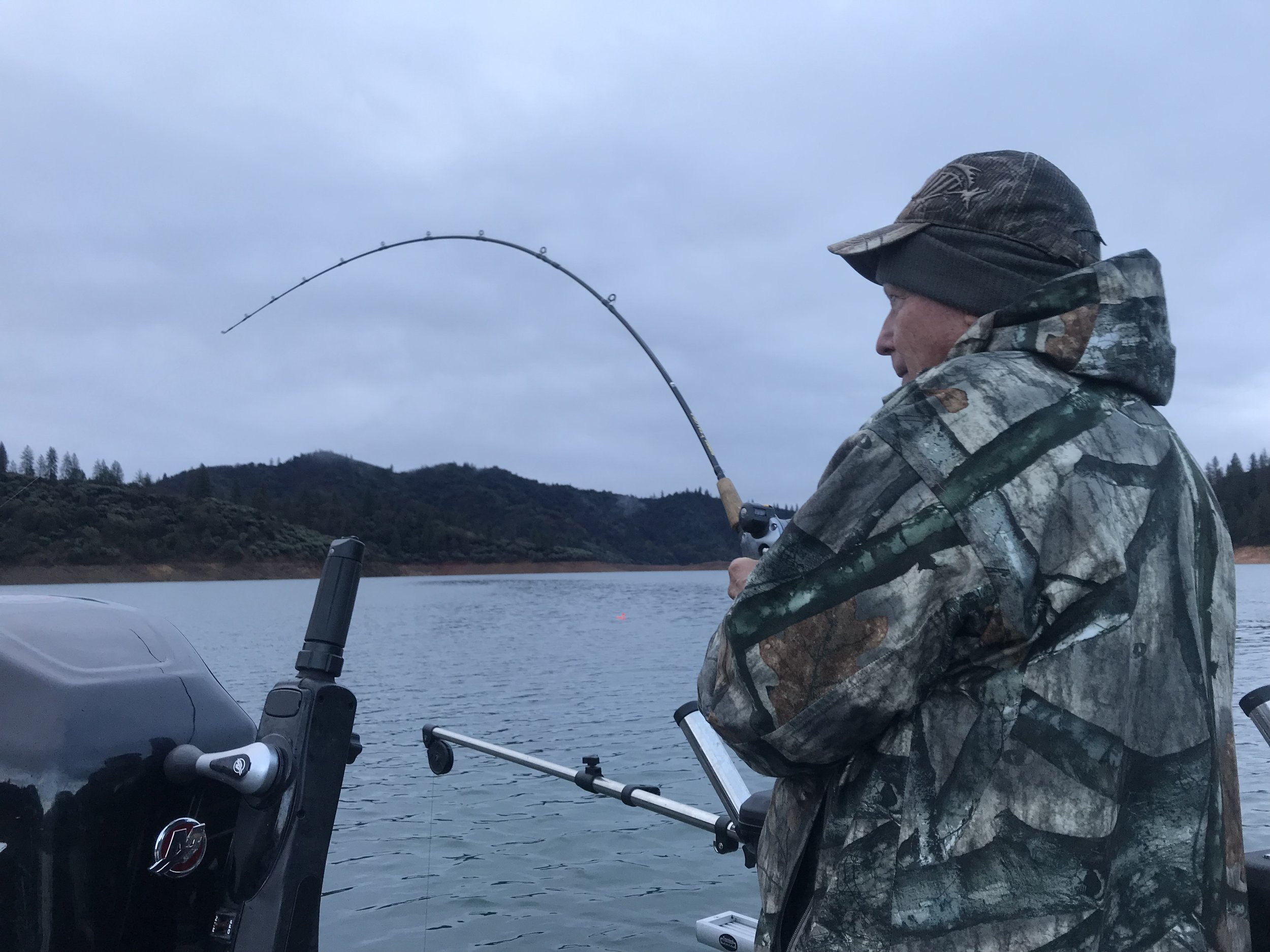 Trolling for Shasta Lake trout and salmon is my preferred method for catching these great fish year round.