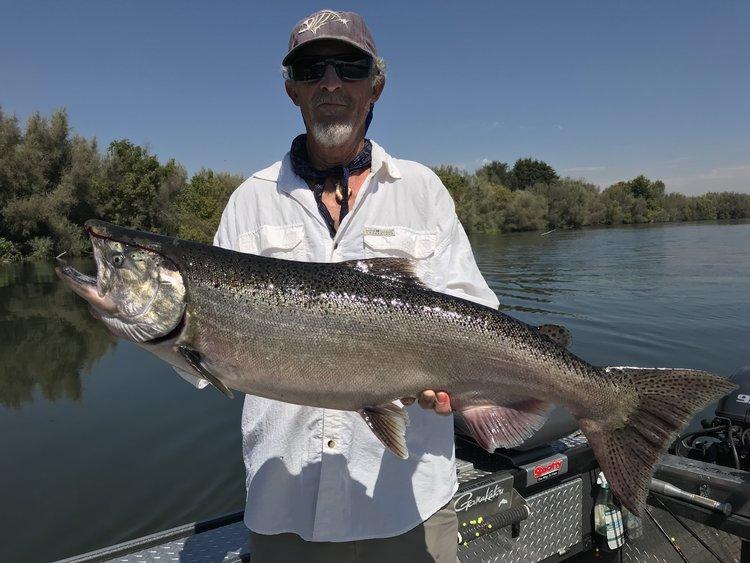 2019 Sacramento River King salmon fishing! — Jeff Goodwin Fishing