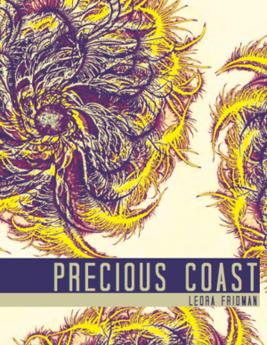 precious coast.png