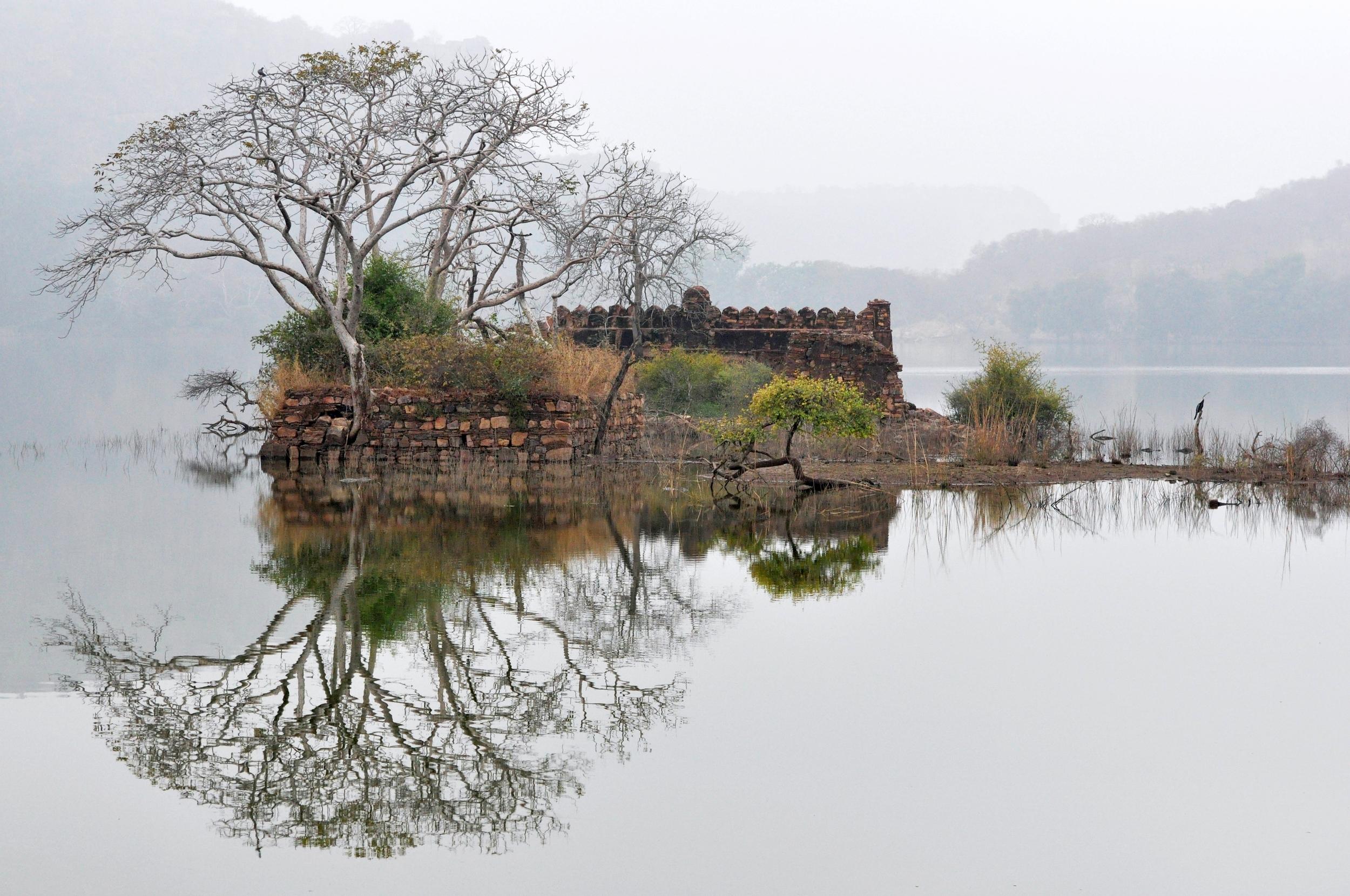 Ranthambore Lake, India