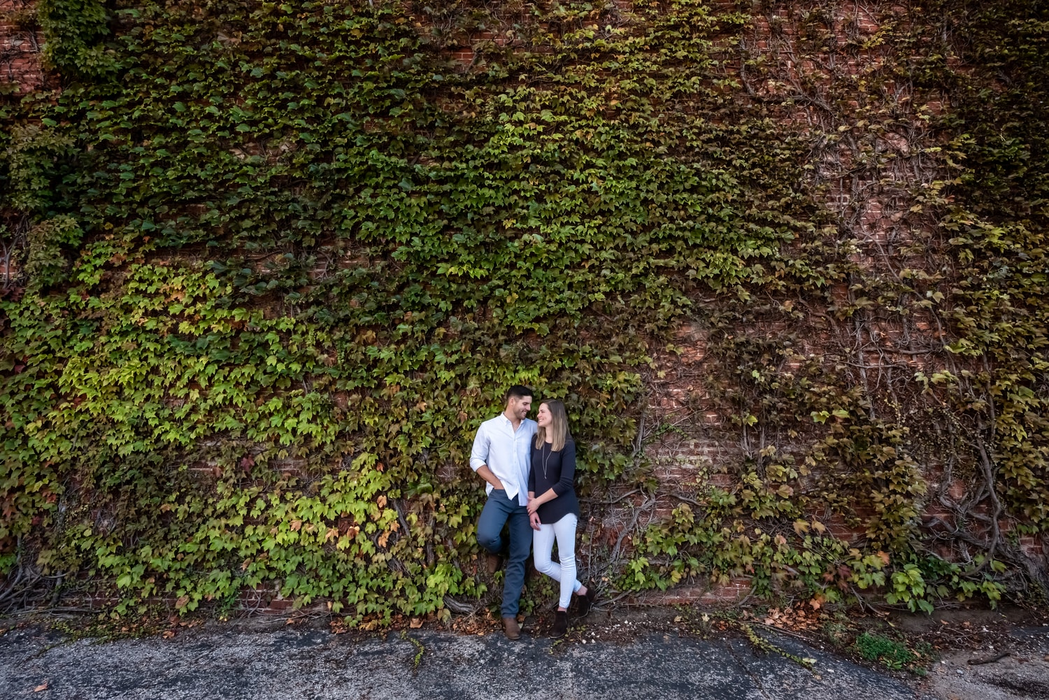 Copy of Vine Wall Engagement