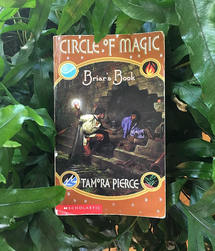 briar's book sm.jpg