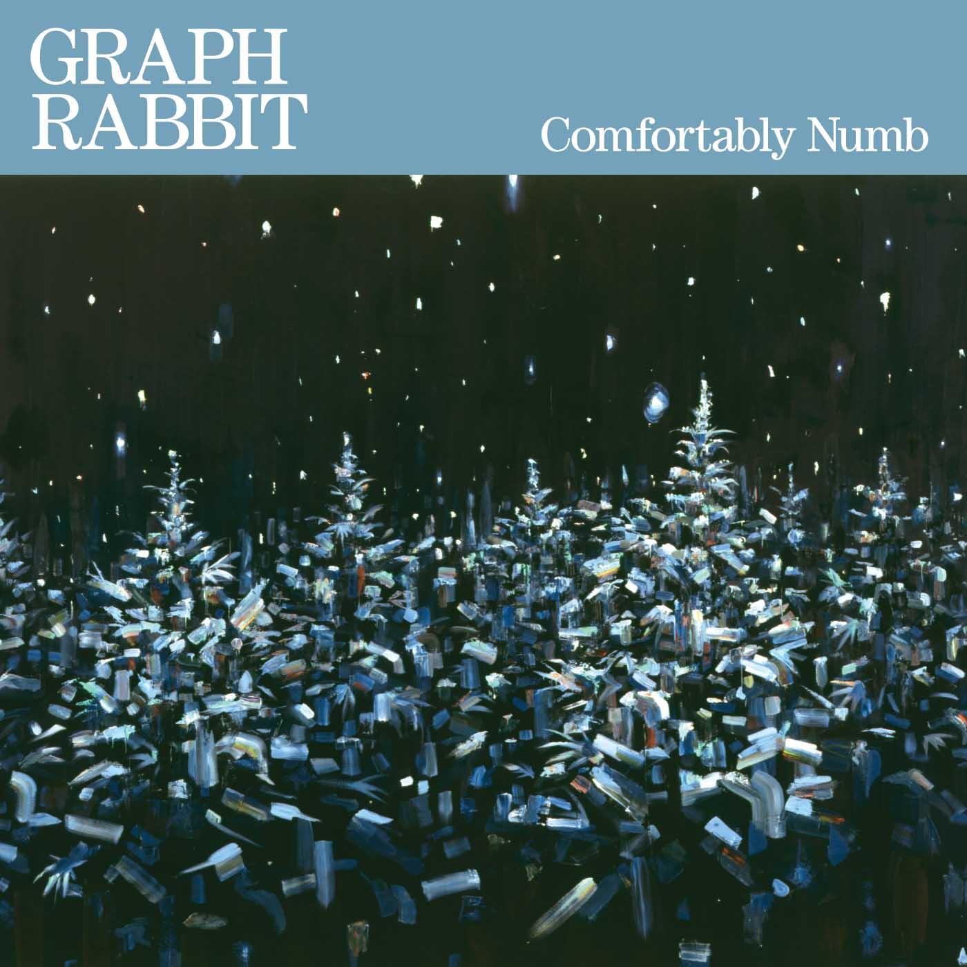 """Comfortably Numb   Graph Rabbit  Vinyl 12"""" EP, Hi-Res, Digital"""