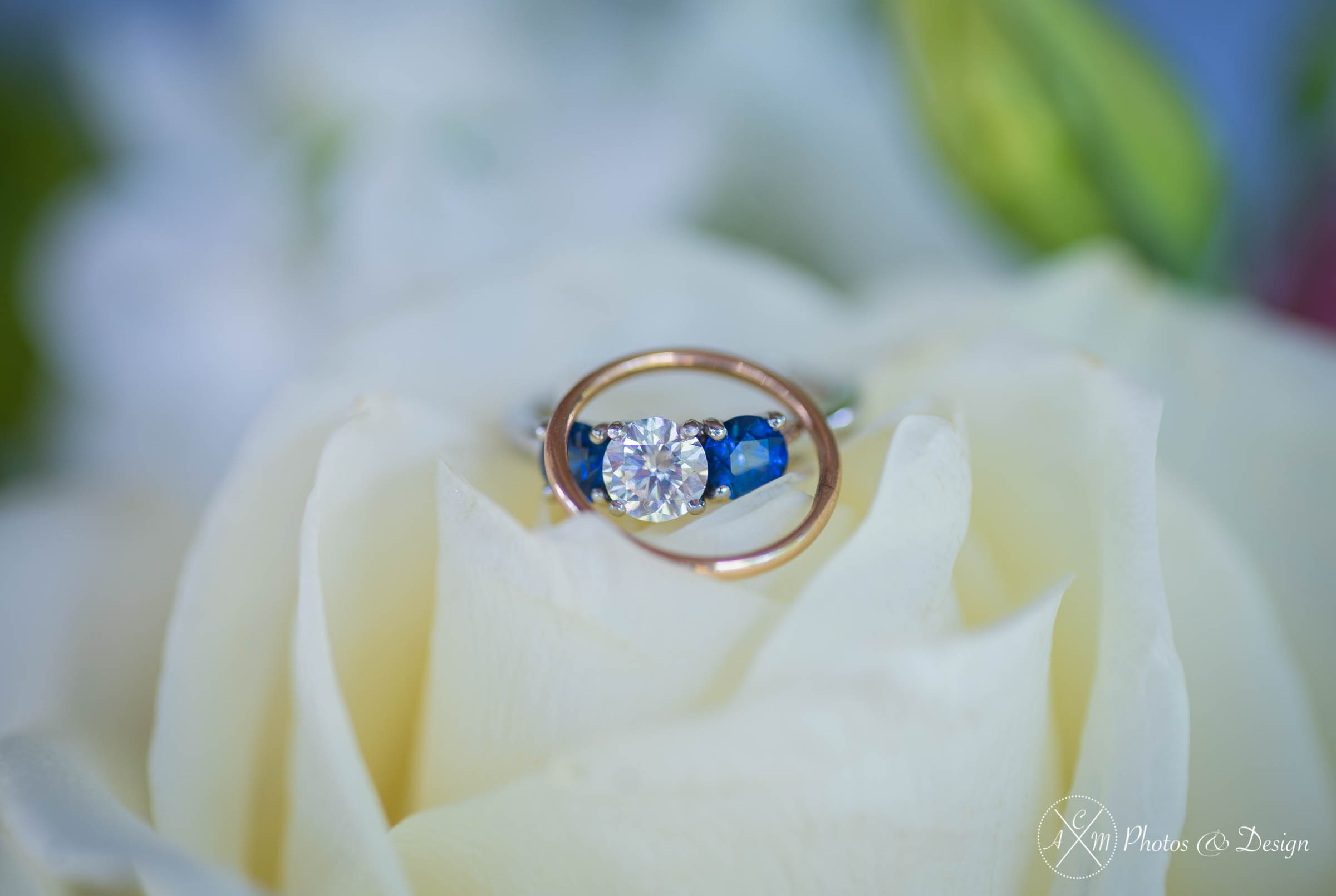 This is an example of one of our photos with a macro lens. Macro lenses are amazing at catching the details of something small like rings but you will see that quickly other items begin to fall out of focus i.e. the flower that these are sitting on. This is a great look for something like an engagement ring because it helps your eye focus on the ring.