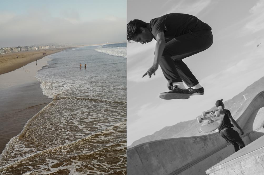 arbol-venice-beach-12.jpg