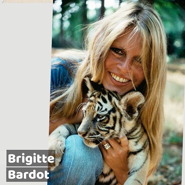 #BrigitteBardot, born in 1934 ,  is a former #actress in #France  she's been an #animal #rights #activist since the #70s #pursuitofleisure #thearbollife
