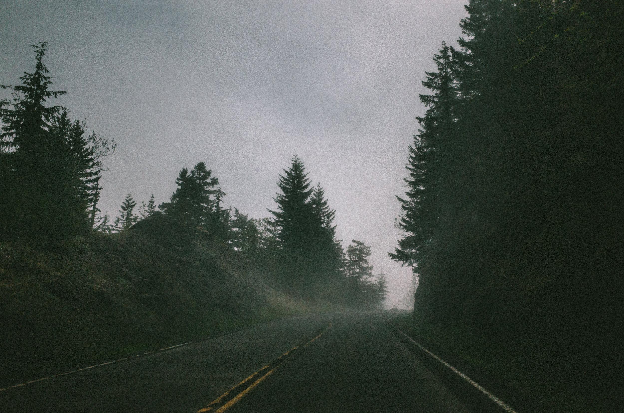 Roadtrip_KaveerRai_07.jpg