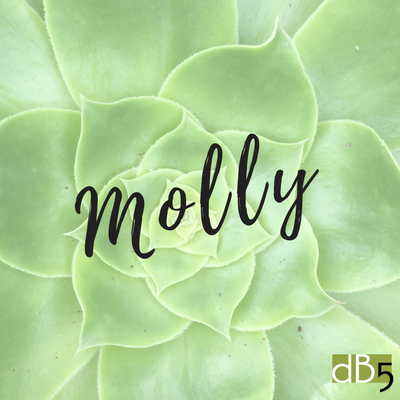 Done By 5 Blog, Molly virtual assistants, small business, San Francisco Bay Area