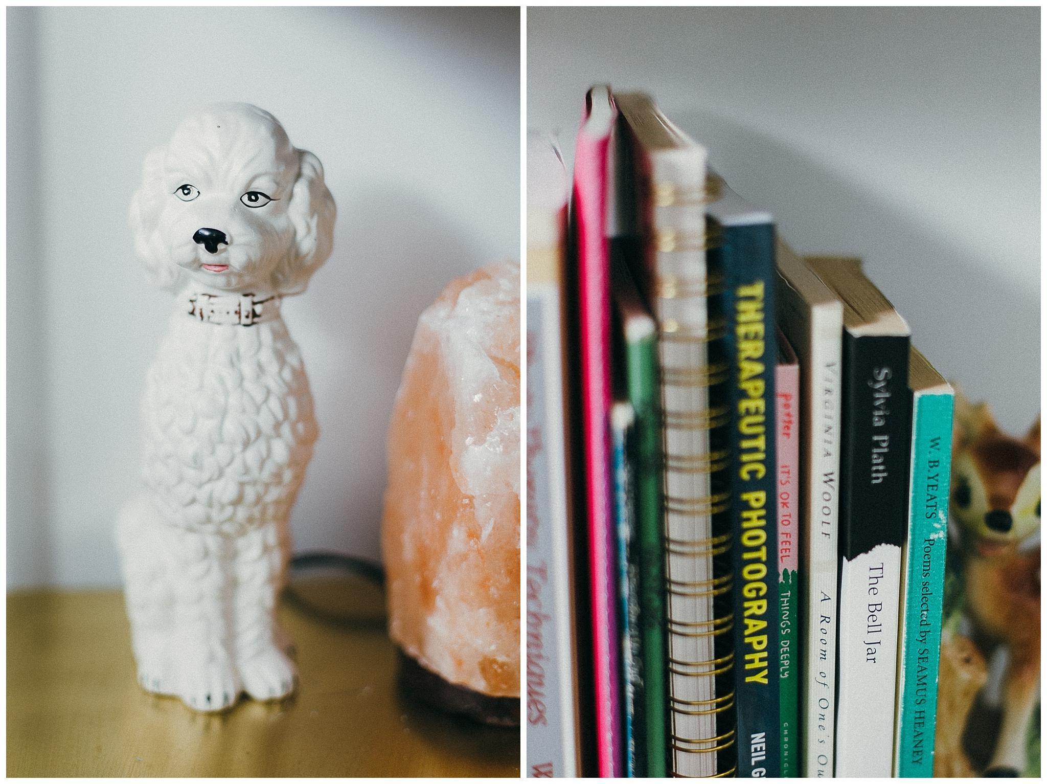 This poodle was from Value Village where someone donated their entire poodle collection. I went back like 3 times and finally I just had to take one home. I still haven't unpacked the majority of my books (we don't have bookshelves anymore, and I feel super scandalous sharing that with you) - so I just have a few old standby's sitting out here and there until I figure things out.