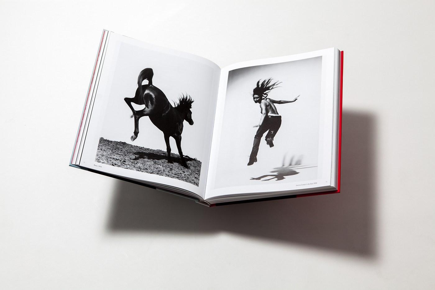 MENDO_books_carli_hermes_002.jpg