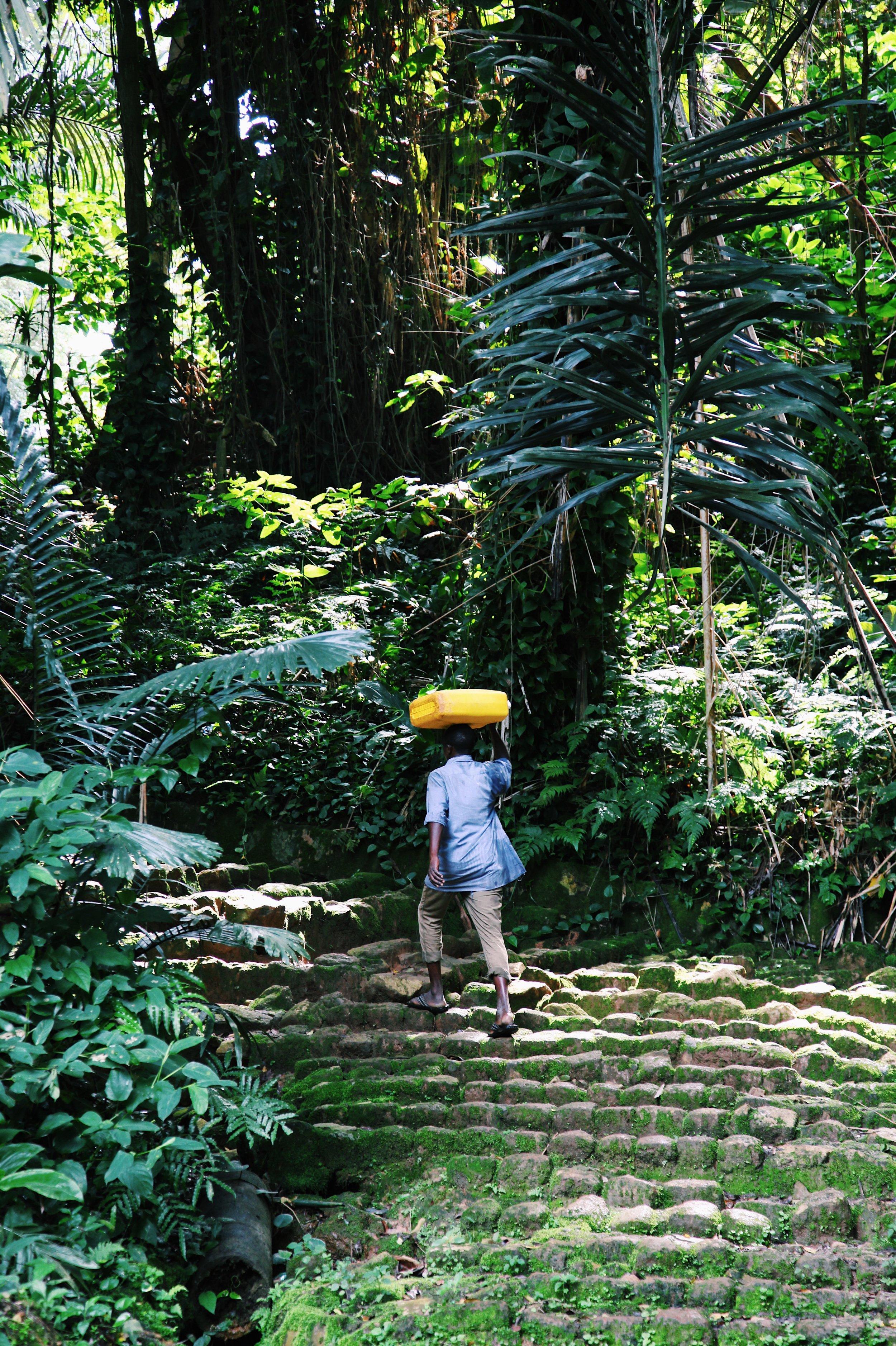A man carries water in Entebbe Botanical Garden by Joost Bastmeijer.JPG