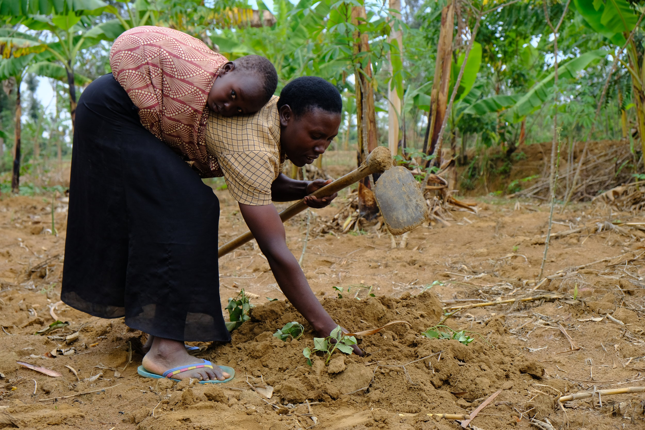 Mama Aimable and her son Vincent work the land.JPG