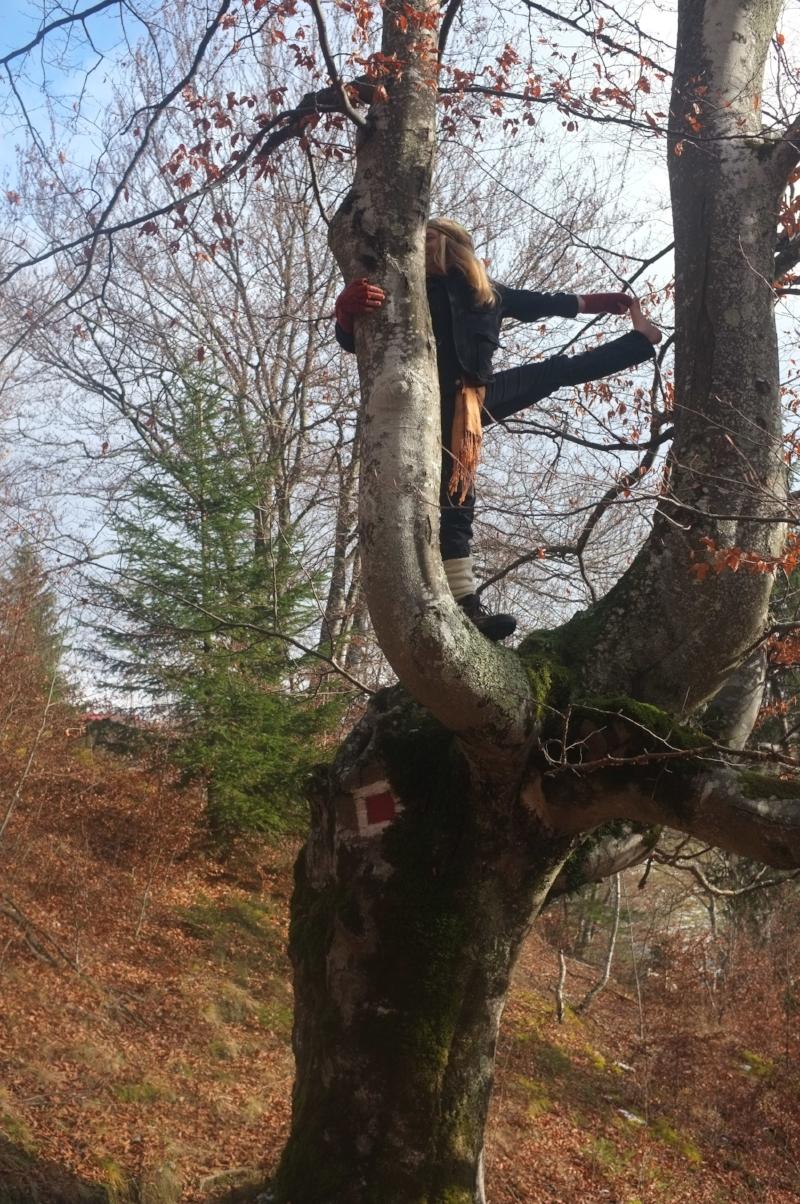 Yoga Pose On A Tree
