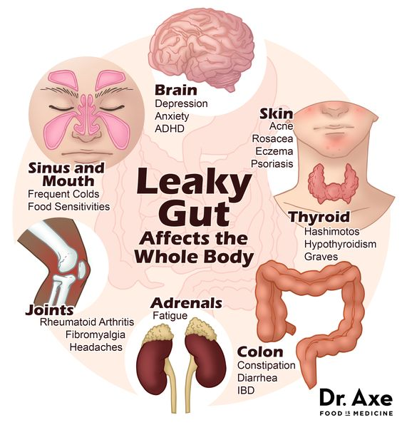 Leaky Gut Affects The Whole Body